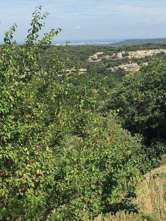 Venasque, Francja: Lovely hilltop village!