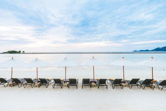 Dara Samui Beach Resort : Beach - Sun decks