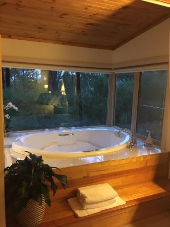 Myers Creek Cascades: Dreamwood Cottage is just Pure Bliss