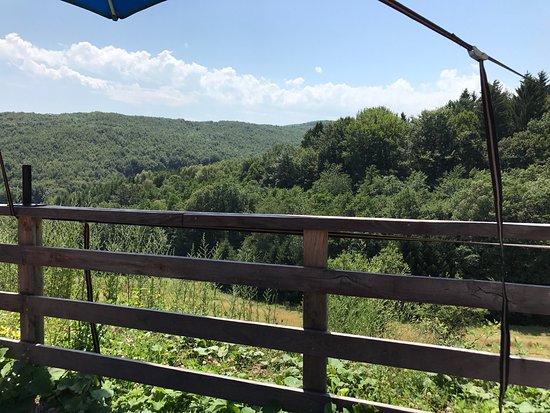 Pressbaum, Austria: Repas en pleine nature