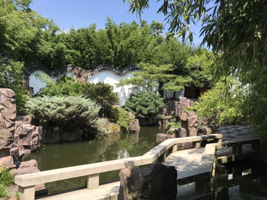Chinese Scholar 39 S Garden In The Summer Heat Picture Of Snug Harbor Cultural Center Staten