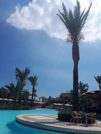 Alaminos, Chipre: Pool