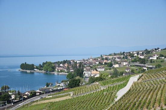 Cully, Switzerland: Umgebung