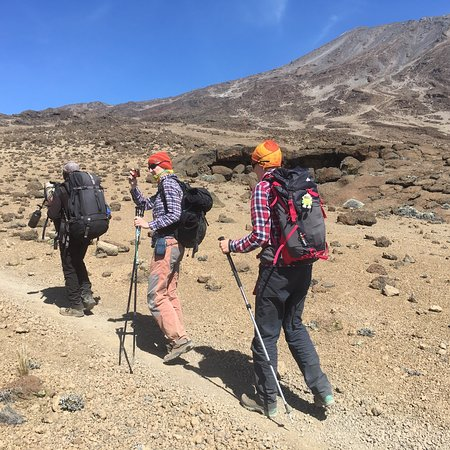 pictures from a recent ascent of kilimanjaro 19343 the roof of