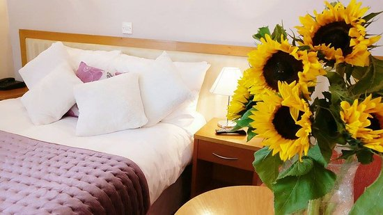 The Pier Hotel, Limerick: New Refurbished Rooms