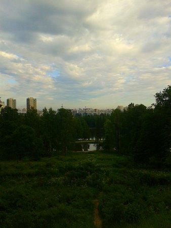 Pargolovo, Rusia: Пулковские высоты.