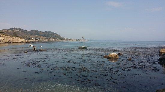 Avila Beach, CA: 20170709_164945_large.jpg
