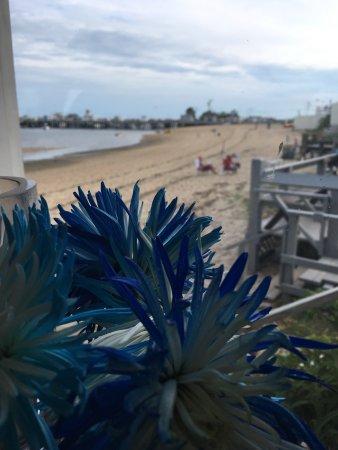 Harbor Lounge: Beautiful view!