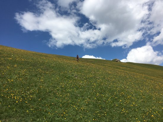 Val Gardena, Italië: photo7.jpg