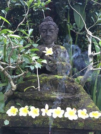 Nirwa Ubud Homestay: Garden