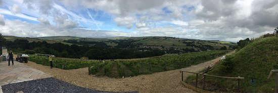 Holmfirth Vineyard: photo5.jpg