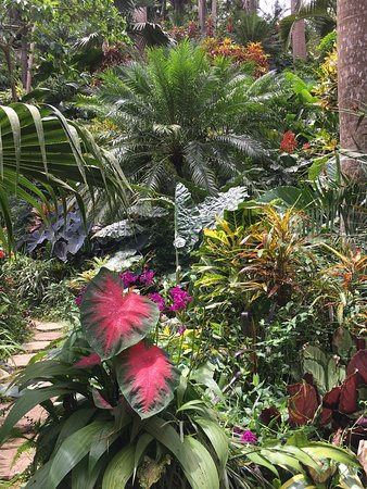Hunte's Gardens: Enchanting