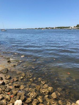 Bicentennial Park, Lantana, Florida: Water Views May 2017