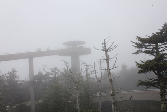 clingmans dome weather - 550×367