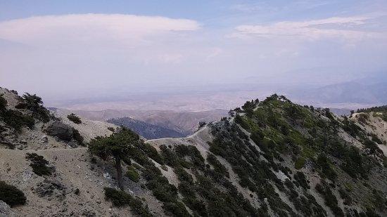 Mount Baldy, Kaliforniya: Backbone section