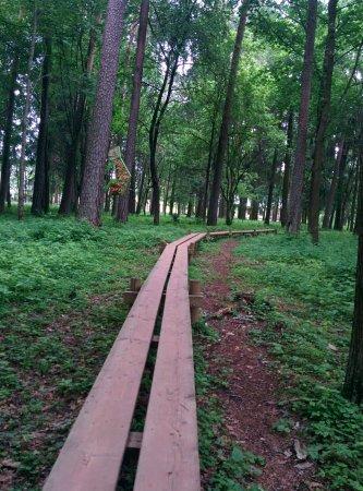 Valmiera, Łotwa: IMG_20170710_114440_large.jpg