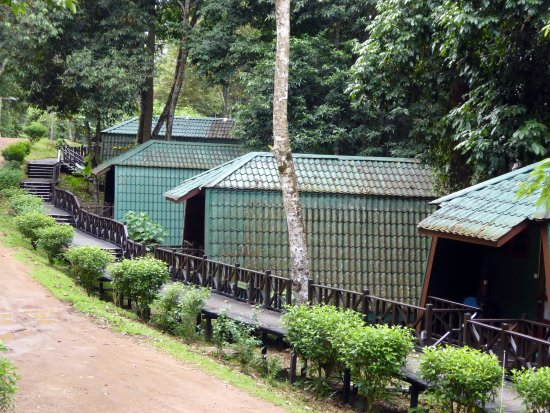 Tabin Wildlife Resort: River Lodges.