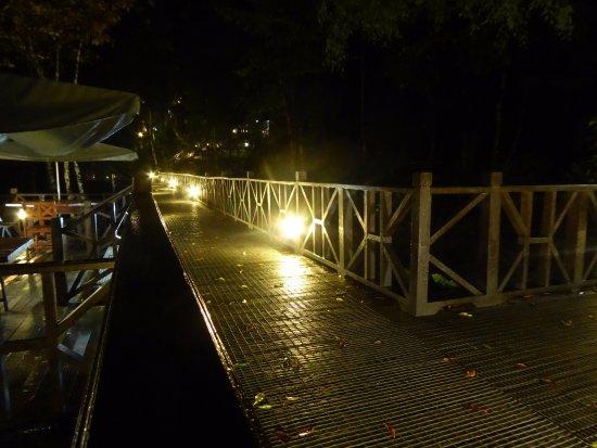 Tabin Wildlife Resort: Night view.