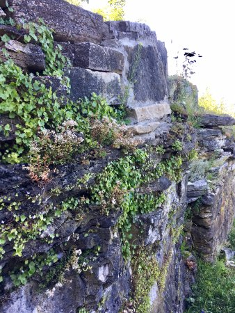 Spring Bay, Canada: The stone walkway down to the waterfront is lined with this rock garden wall