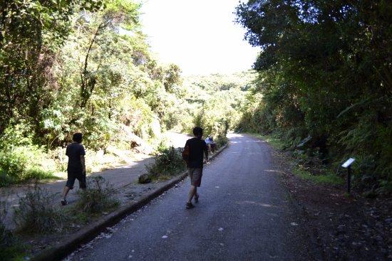 Poas Volcano National Park Photo