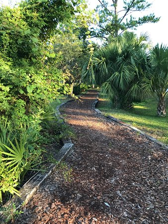 Cedar Key RV Resort: photo6.jpg