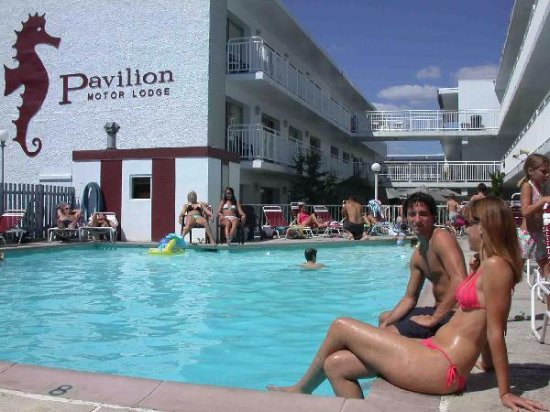 Pavilion Motor Lodge: pool area