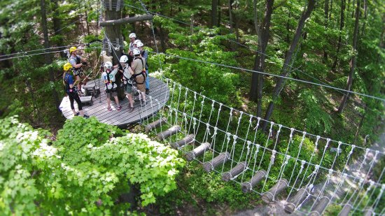 Morgantown WV WVU Zipline Canopy Tour & WVU Zipline Canopy Tour - Picture of Morgantown West Virginia ...