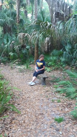 Highlands Hammock State Park: Mom and daughter time
