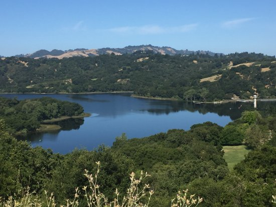 Lafayette Reservoir Photo