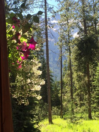 Jenny Lake Lodge: Huckleberry Cabin