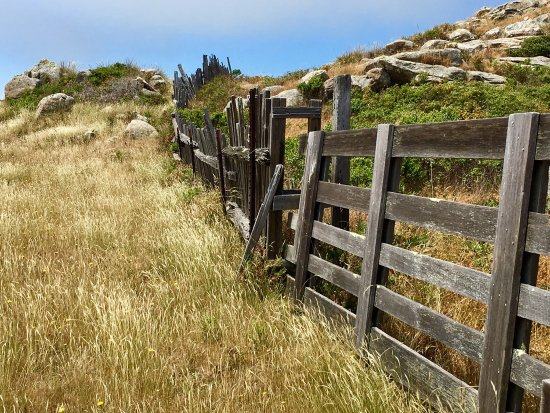Jenner, Californien: photo3.jpg
