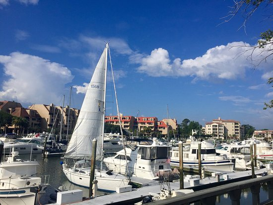 Disney's Hilton Head Island Resort: Marina next to hotel
