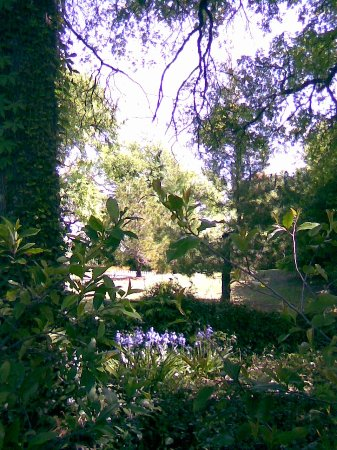 Chandor Gardens (Weatherford) - 2018 All You Need to Know Before You ...