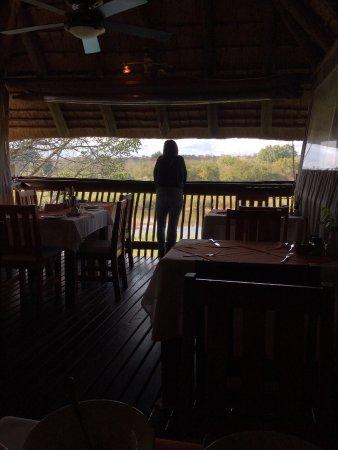 سابي ريفر بوش لودج: Sabie River Bush Lodge
