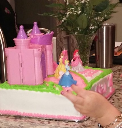 Hartsville, SC: As you can see, this cake is ideal for a young girl who lives princesses,