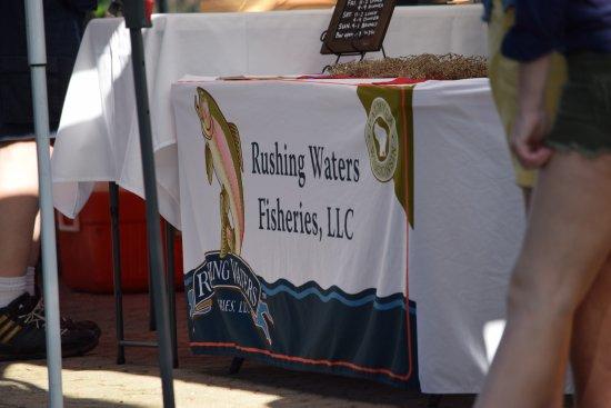 Waukesha, WI: Fish vendor