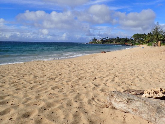 Aloha Surf Hostel: photo0.jpg
