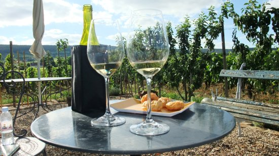 Gevrey-Chambertin, France : Welcome drinks in the garden after a long drive, perfect start to our stay