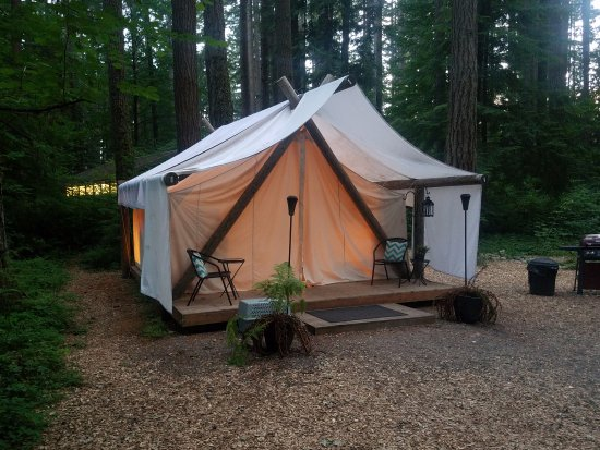 Pampered Wilderness Tent - Picture of Millersylvania State