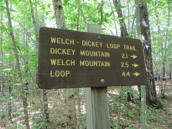 Thornton, NH: Sign near start of loop