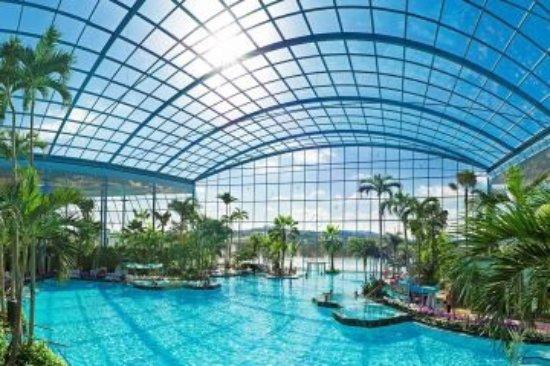 panorama palmenparadies bild von thermen badewelt sinsheim sinsheim tripadvisor. Black Bedroom Furniture Sets. Home Design Ideas