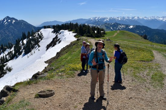 Experience Olympic Tours: Hurricane Ridge