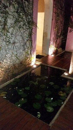 Rosas & Xocolate Hotel Restaurant: un lugar muy romántico, especial para un aniversario, una declaración o una reconciliación.