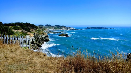 Gualala Point Regional Park: Overlooking the Beach