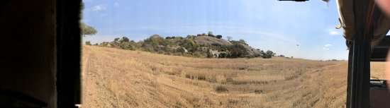 Pioneers Camp: Central Serengeti