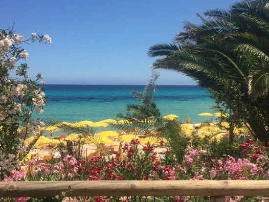 The Free Beach Club Prices Amp Hotel Reviews Costa Rei
