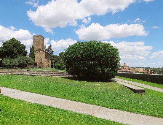 Parco Torre di Lavello: il parco