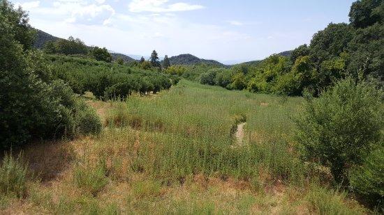 Oak Glen, CA: A lovely view along the trail.