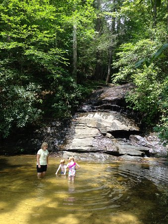 Travelers Rest, SC: Wife and grandkids enjoying the falls.