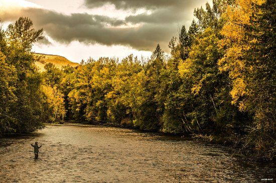 Kamloops, Canada: Fly Fishing
